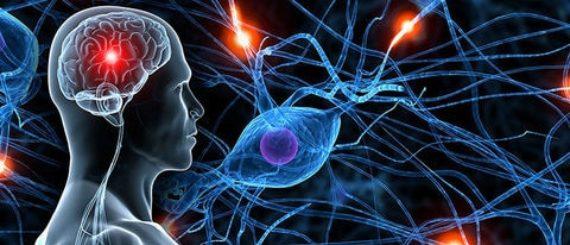 hypnose neurobiologie