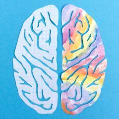 hypnose hémisphères du cerveau